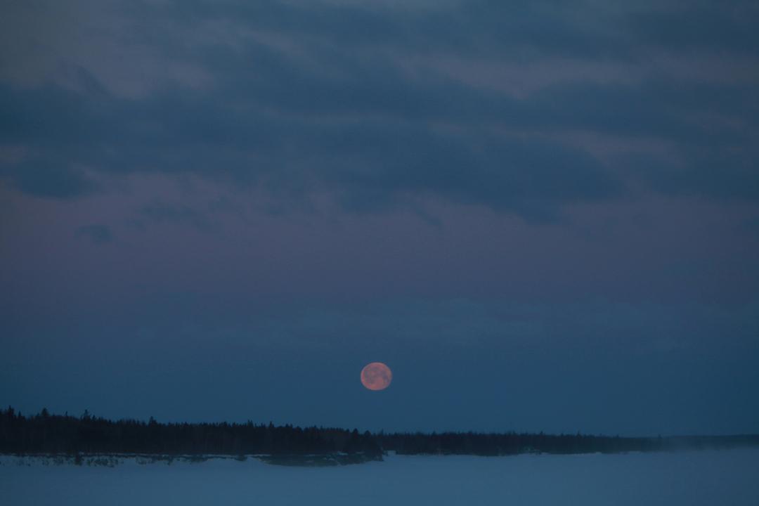 Froid de lune